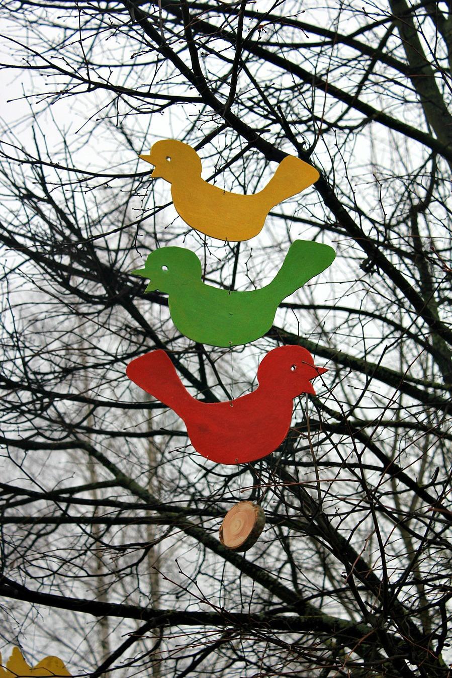 Trispalviai paukščiai
